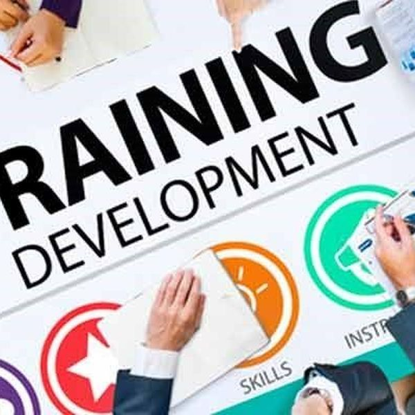 Training And Development Essay Examples