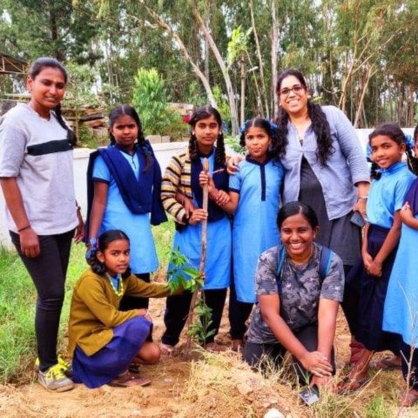 Tree Plantation In School Essay Examples