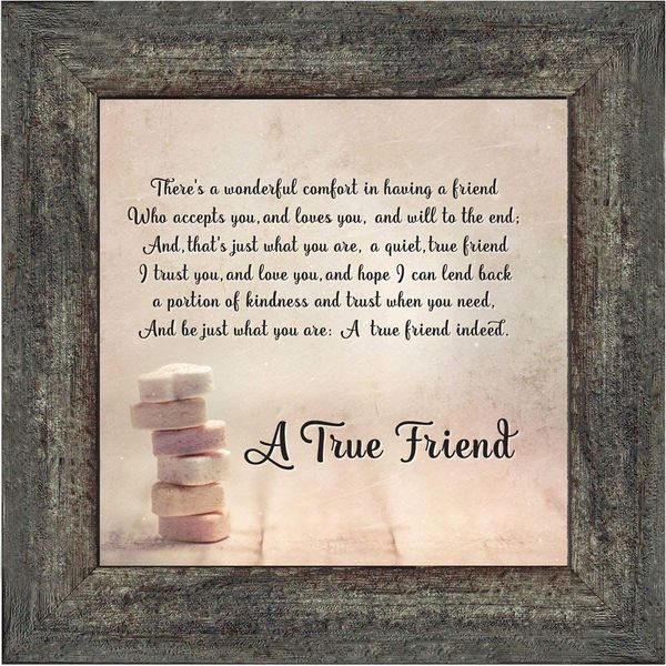 True Friend Essay Examples