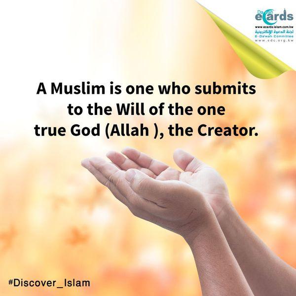 True Muslim Essay Examples