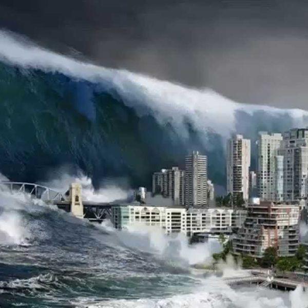 Tsunami A Natural Disaster Essay Examples