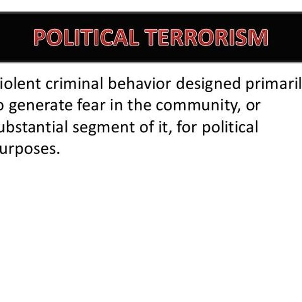 Types And Causes Of Terrorism Essay Examples