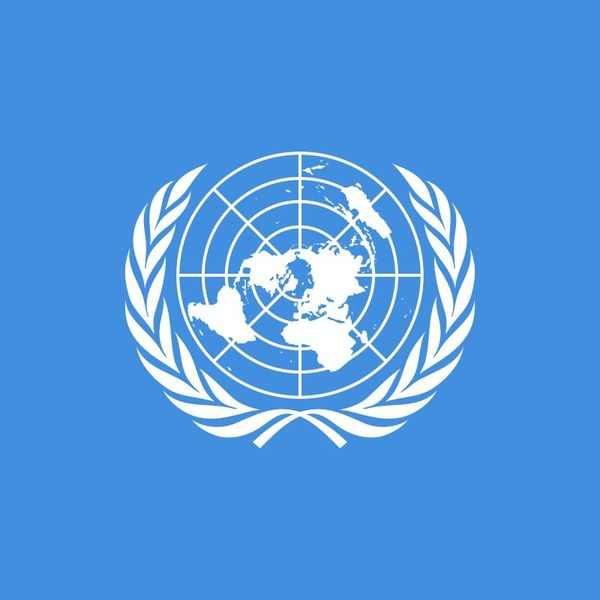 United Nations Organisation Essay Examples