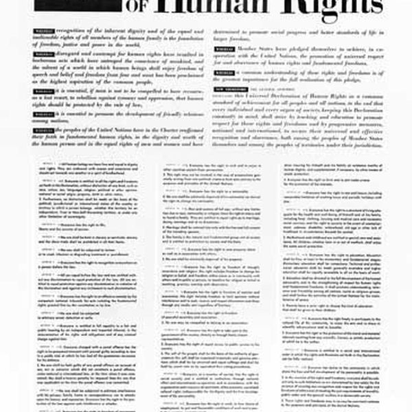 Universal Declaration Of Human Rights Essay Examples