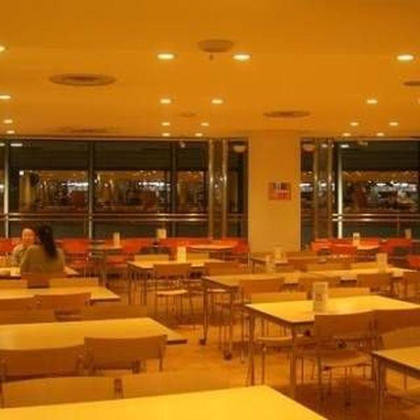 University Cafeteria Essay Examples