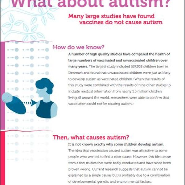 Vaccines And Autism Essay Examples
