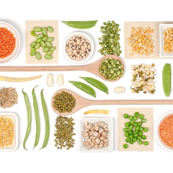 Vegetarian Essay Examples