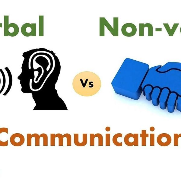 Verbal And Nonverbal Communication Essay Examples