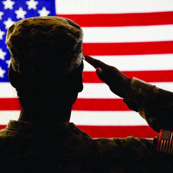 Veterans Essay Examples