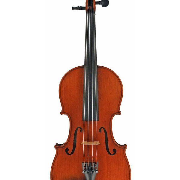 Violin Essay Examples