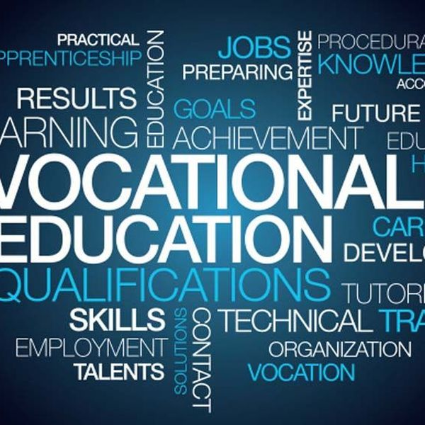 Vocational Education In India Essay Examples
