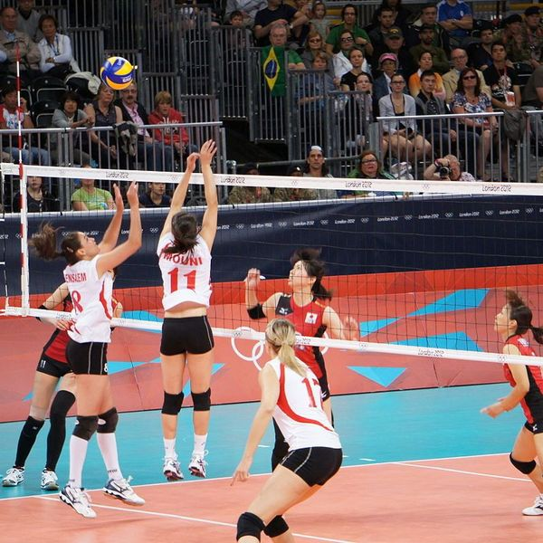 Volleyball Essay Examples