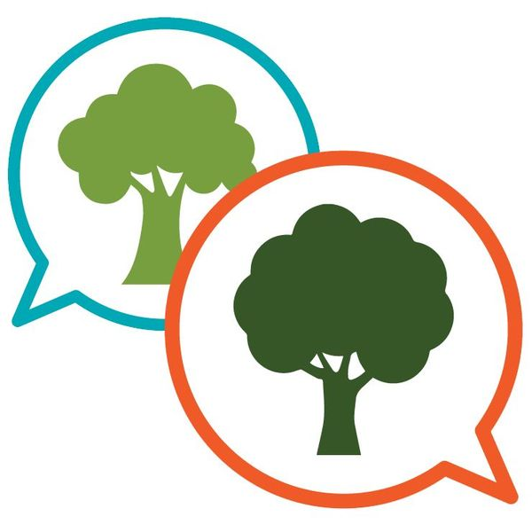 Vote For Trees Essay Examples