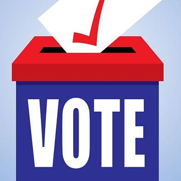 Vote Essay Examples
