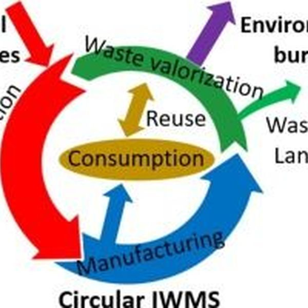 Waste Management System Essay Examples