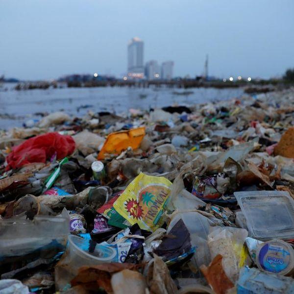Waste Essay Examples