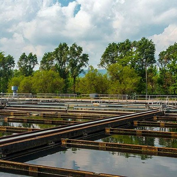 Wastewater Management Essay Examples