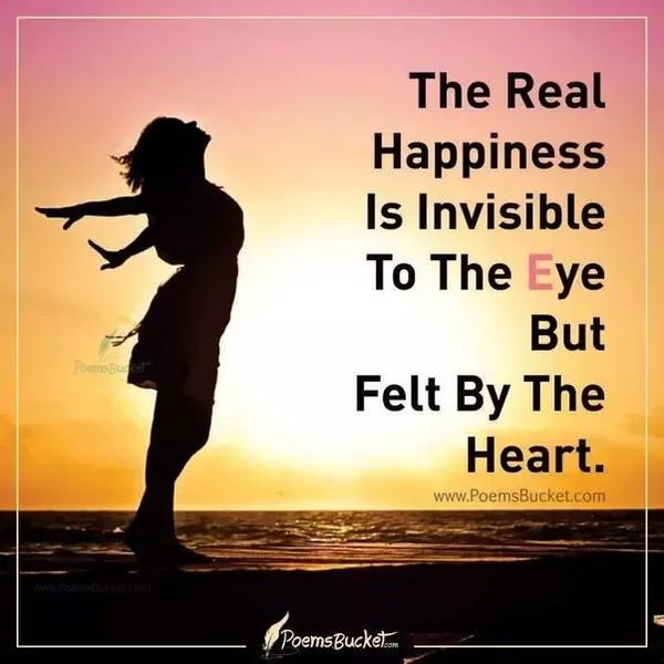 What Is Real Happiness Essay Examples