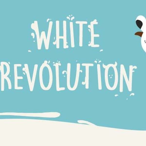 White Revolution In India Essay Examples