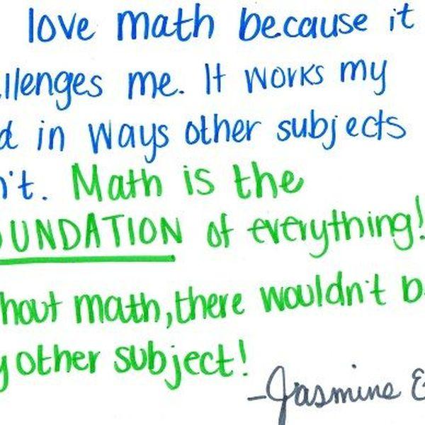 Why I Love Mathematics Essay Examples