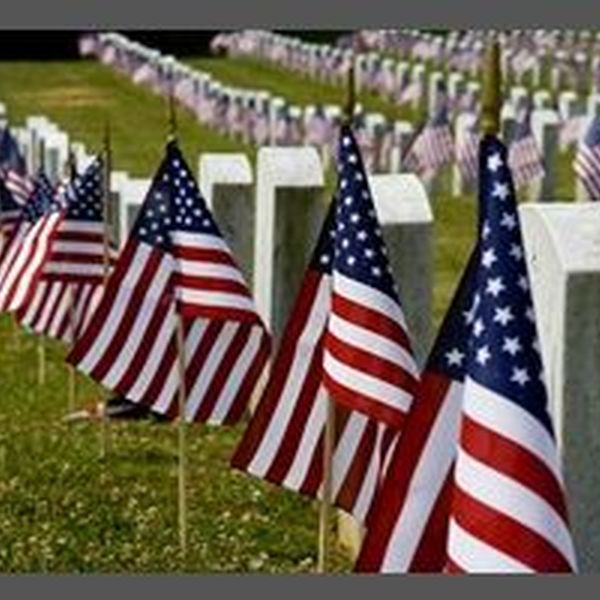 Why Veterans Day Is Important Essay Examples