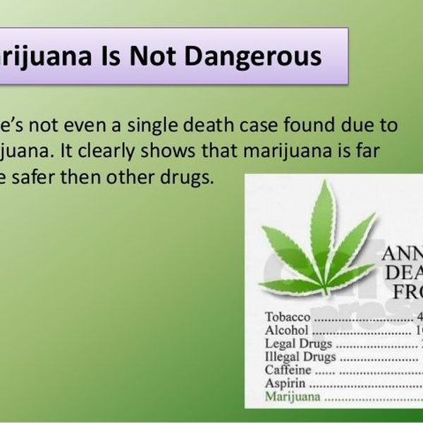 Why Weed Should Be Legalized Essay Examples
