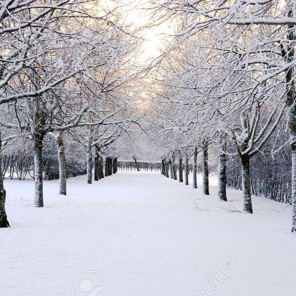 Winter Season Essay Examples