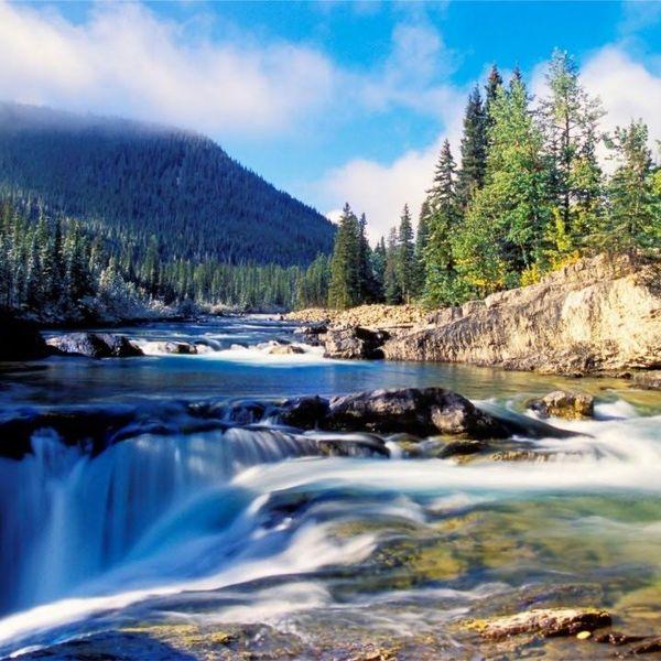 Wonderful World Of Nature Essay Examples