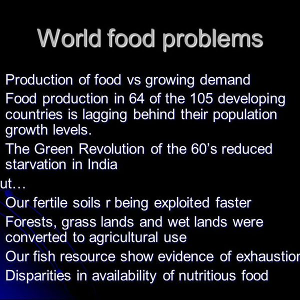 World Food Problem Essay Examples