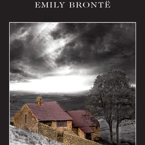 Wuthering Heights Essay Examples