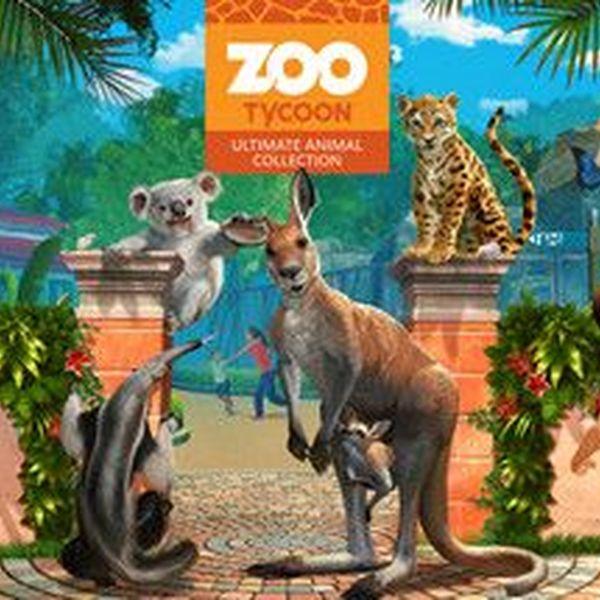 Zoo Essay Examples