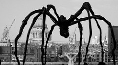Louise Bourgeois Spider, 1996 Bronze with a silver nitrate patina 9 ft 3 in × 27 ft 4 in × 26 ft
