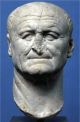 Portrait of Vespasian
